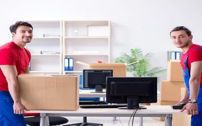 Why Should I Hire Professional Office Removalists?