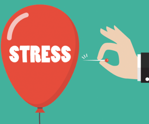 stress reduce by hiring cheap interstate removalists